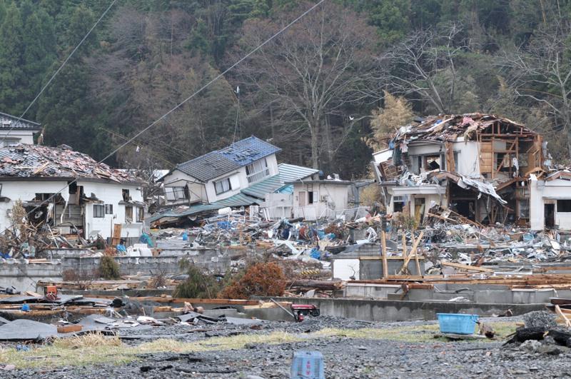 Great East Japan Earthquake and tsunami